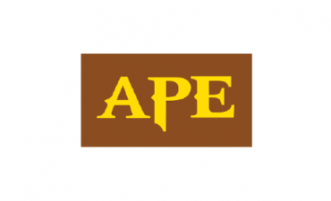 APE AUTOMOTIVE PAINT